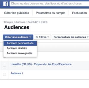 audience personnalisée facebook